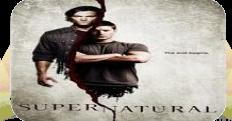 Сверхъестественное 6 сезон (2010)